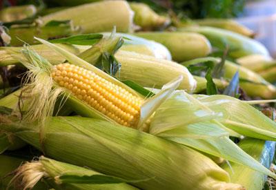 corns-for-skin